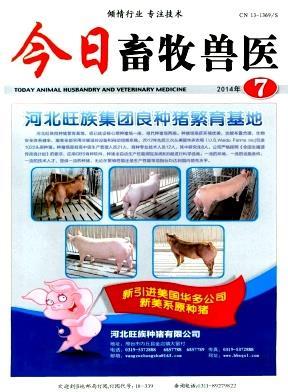 今日畜牧兽医