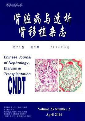 肾脏病与透析