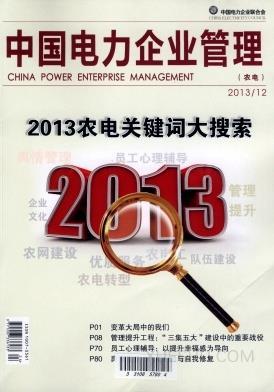 中国电力企业