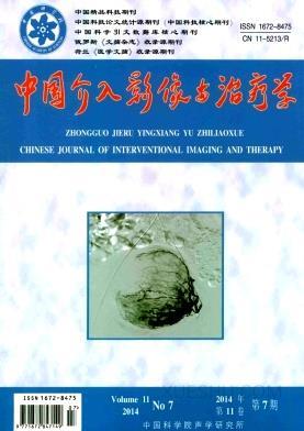 中国介入影像与治疗学