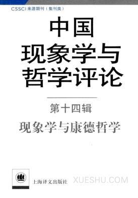 中国现象学与